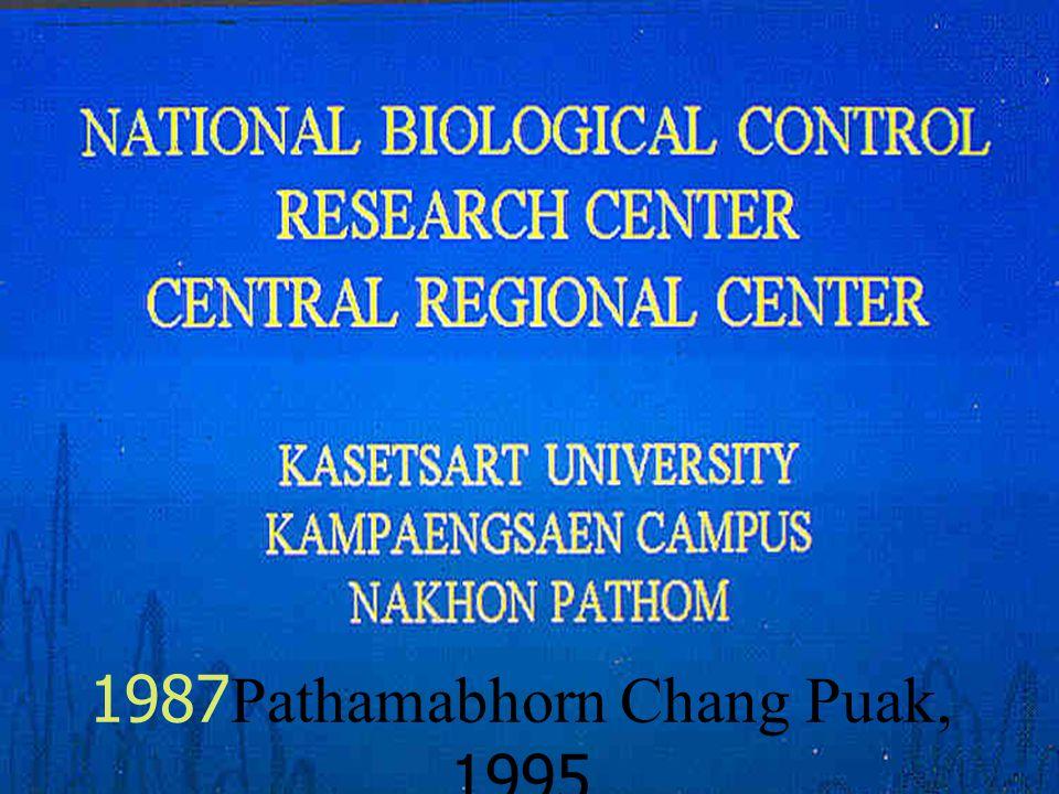 1987Pathamabhorn Chang Puak, 1995
