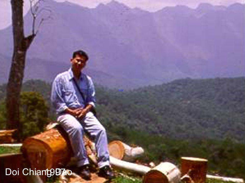 1997 Doi Chiang Dao