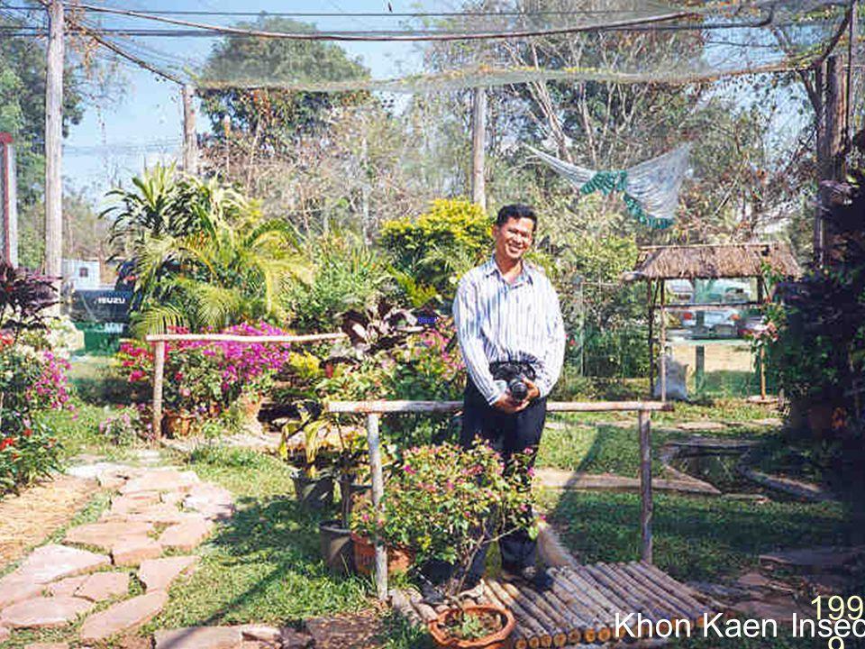 Khon Kaen Insect Zoo 1999