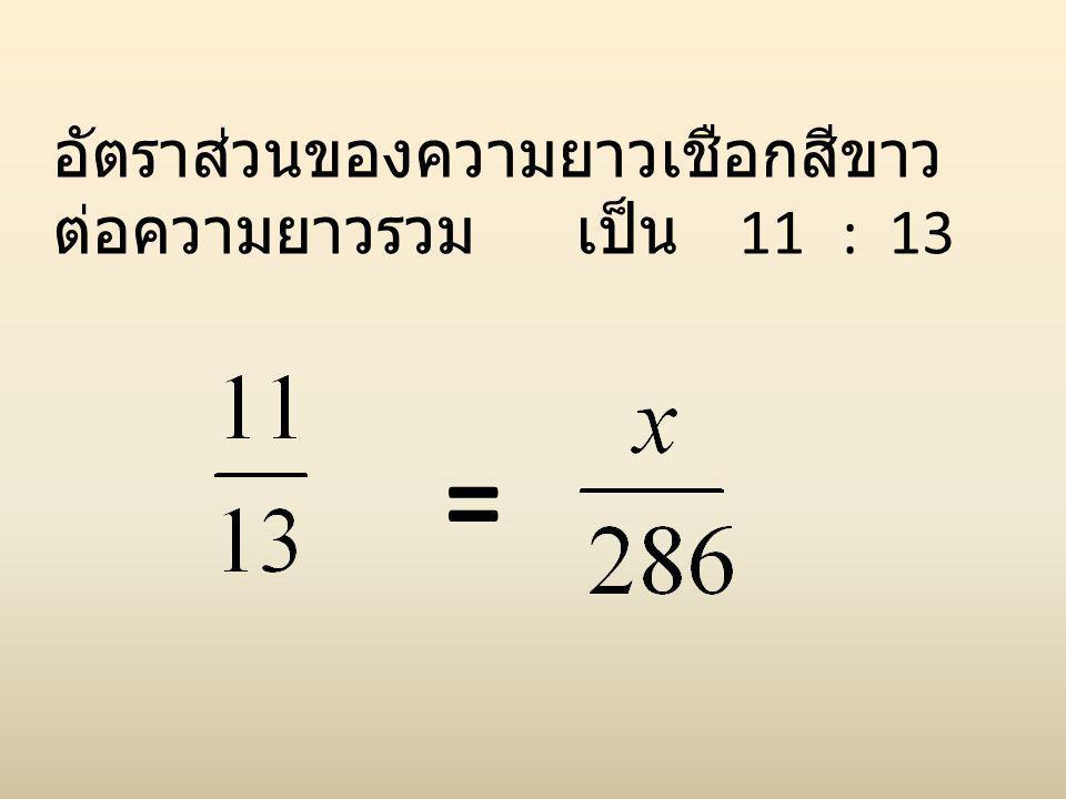 อัตราส่วนของความยาวเชือกสีขาวต่อความยาวรวม เป็น 11 : 13
