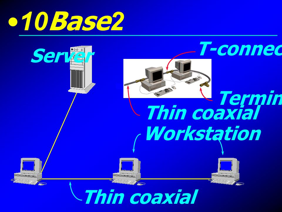 10Base2 T-connector Server Terminator Thin coaxial Workstation