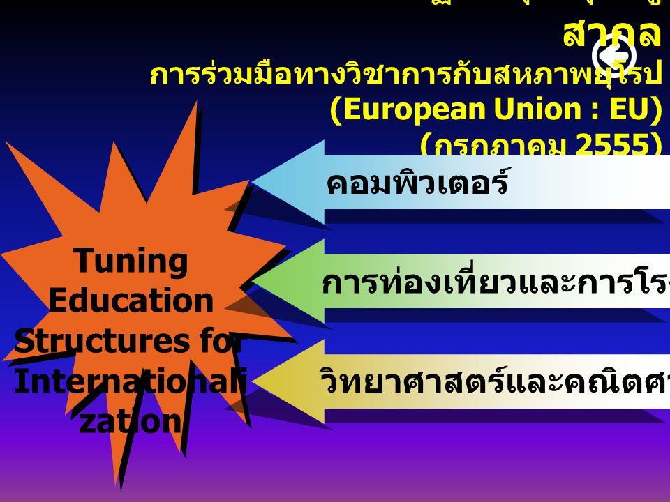 Tuning Education Structures for Internationalization