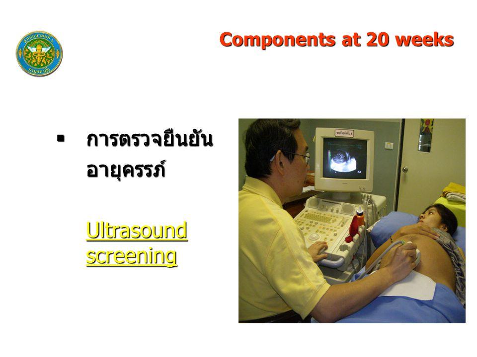 Components at 20 weeks การตรวจยืนยัน อายุครรภ์ Ultrasound screening