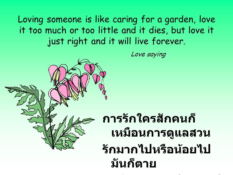 การรักใครสักคนก็เหมือนการดูแลสวน