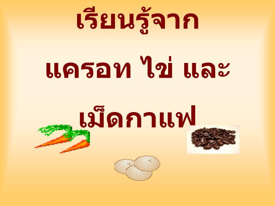เรียนรู้จาก แครอท ไข่ และเม็ดกาแฟ