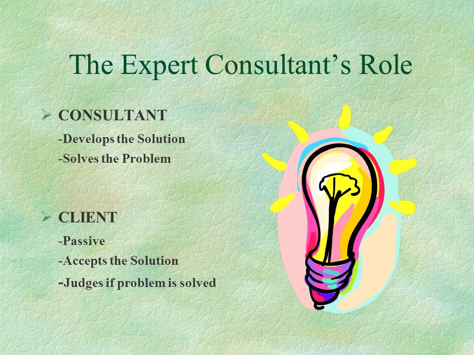 The Expert Consultant's Role