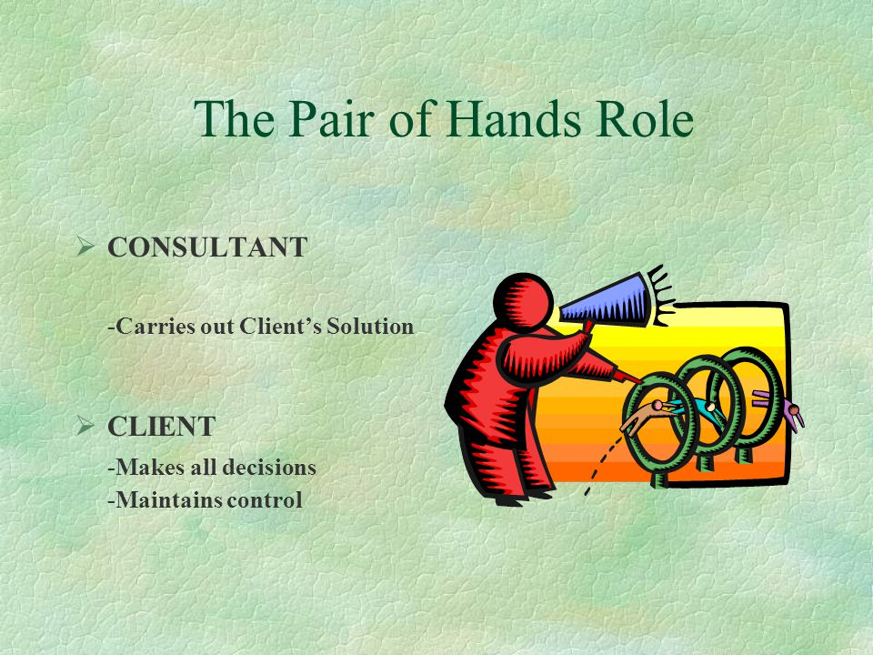 The Pair of Hands Role CONSULTANT -Carries out Client's Solution