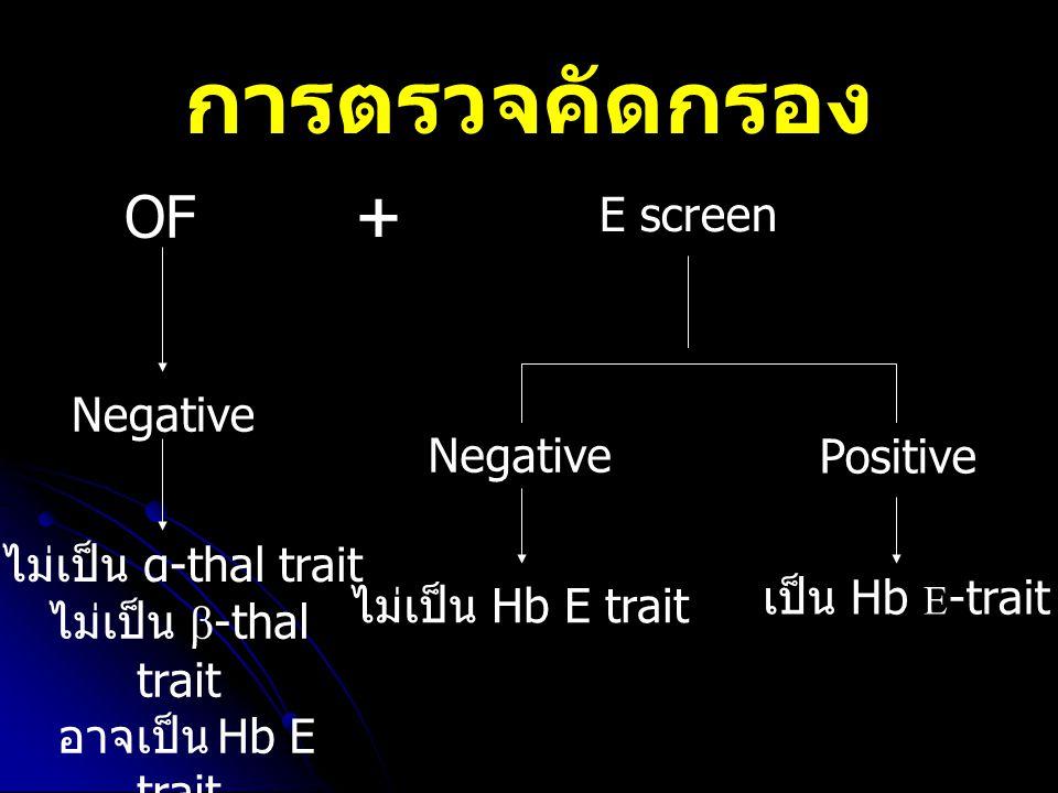 การตรวจคัดกรอง + OF E screen Negative Negative Positive
