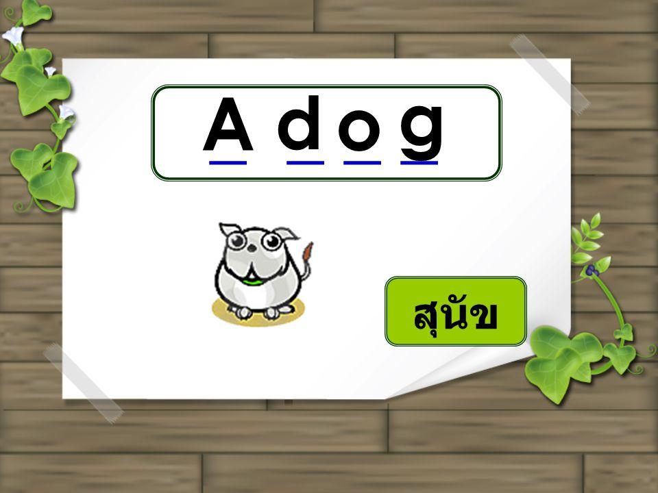 g A d o _ _ _ _ สุนัข