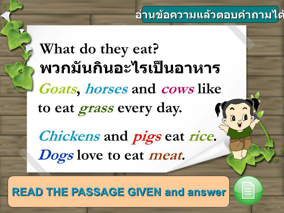 อ่านข้อความแล้วตอบคำถามได้ READ THE PASSAGE GIVEN and answer