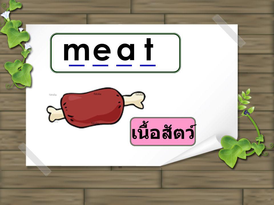 m e a t _ _ _ _ เนื้อสัตว์