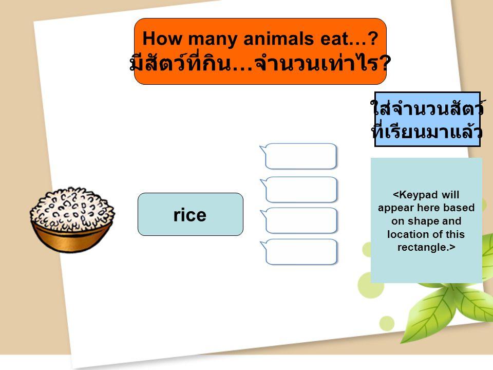 How many animals eat… มีสัตว์ที่กิน…จำนวนเท่าไร