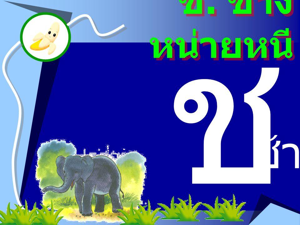 ช ช. ช้าง หน่ายหนี ช้าง