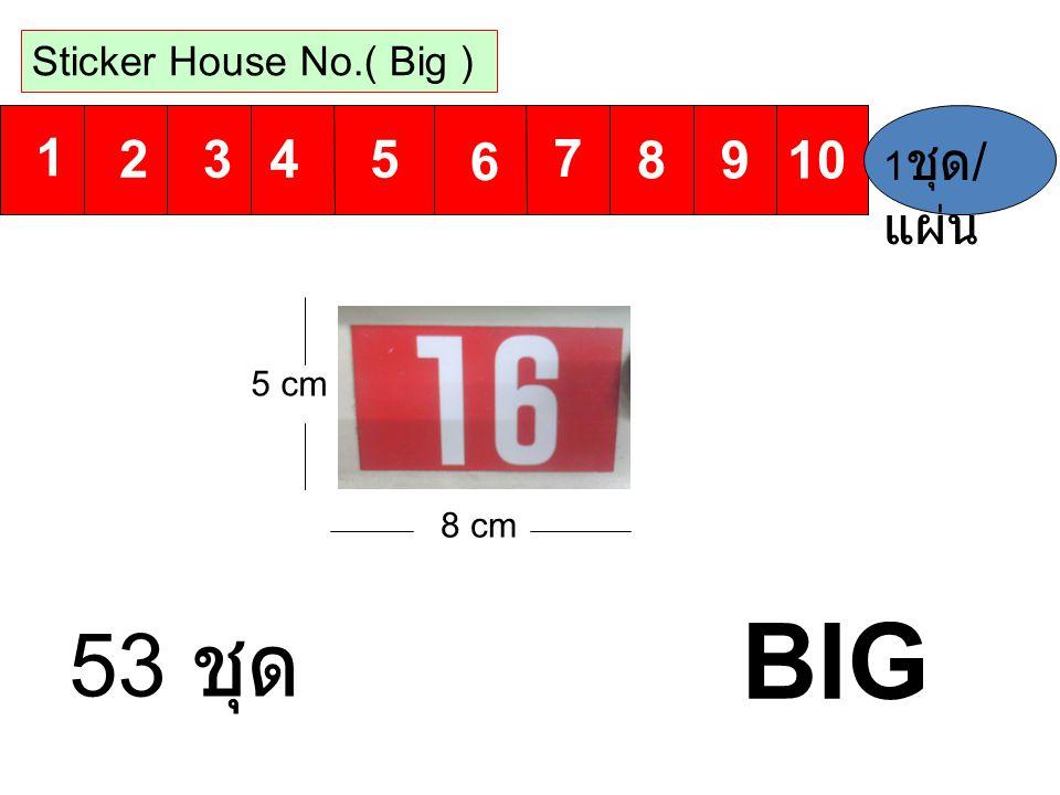 BIG 53 ชุด 1 6 2 7 3 8 4 9 5 10 Sticker House No.( Big ) 1ชุด/แผ่น