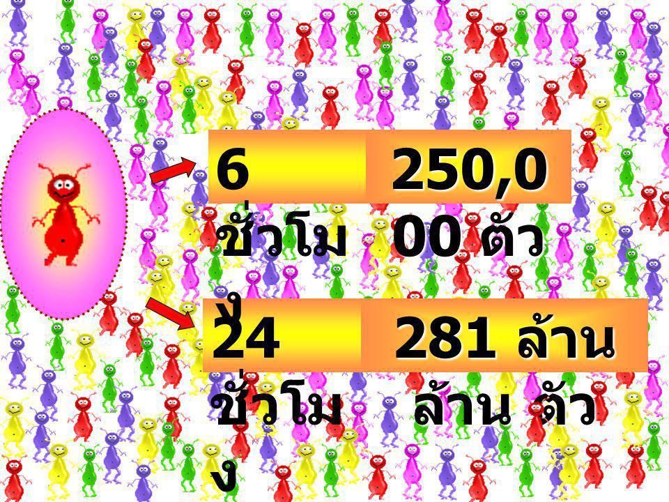 6 ชั่วโมง 250,000 ตัว 24 ชั่วโมง 281 ล้าน ล้าน ตัว