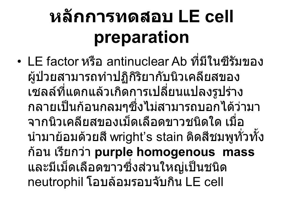 หลักการทดสอบ LE cell preparation