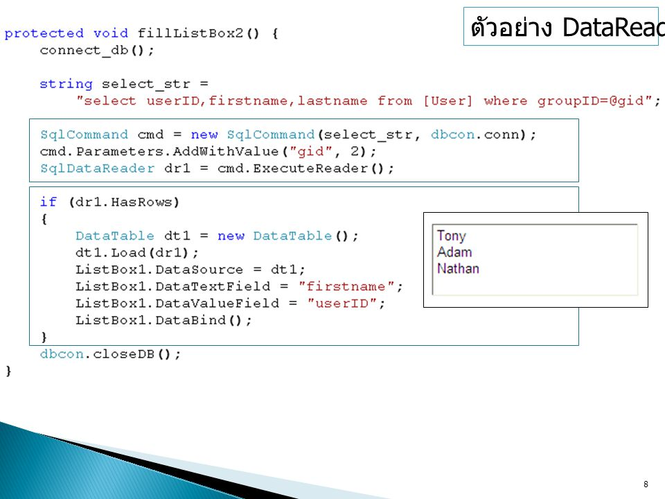ตัวอย่าง DataReader (1)