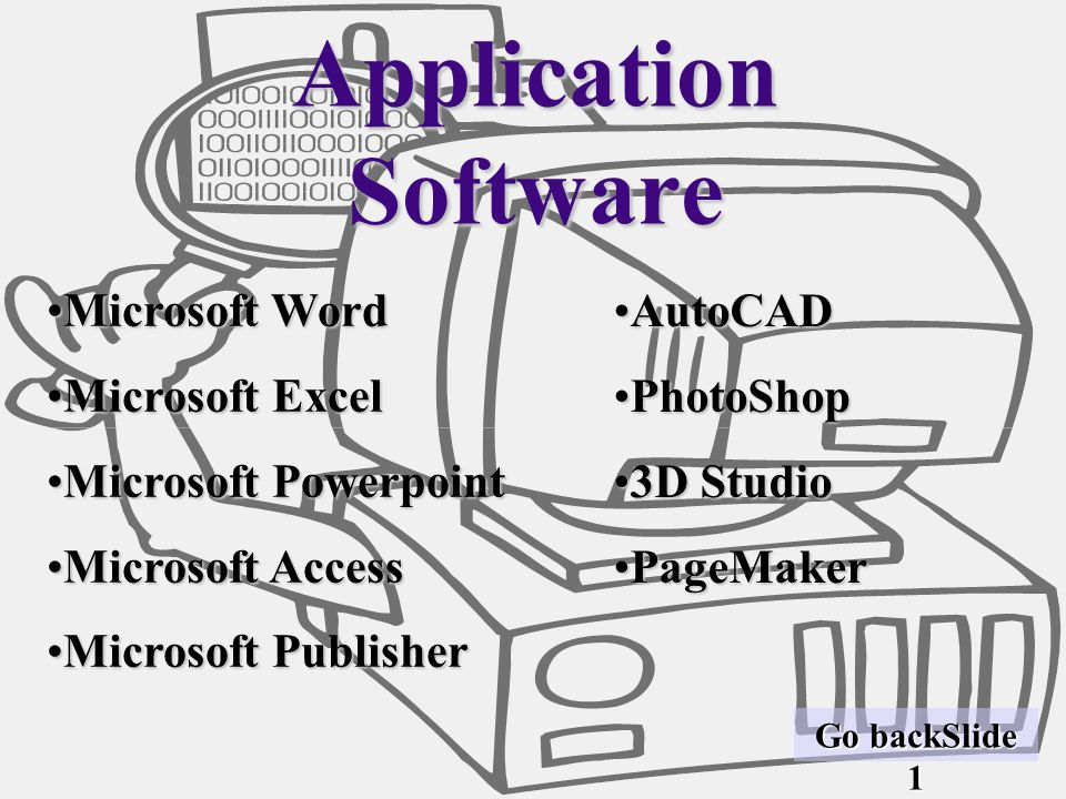 Application Software Microsoft Word Microsoft Excel