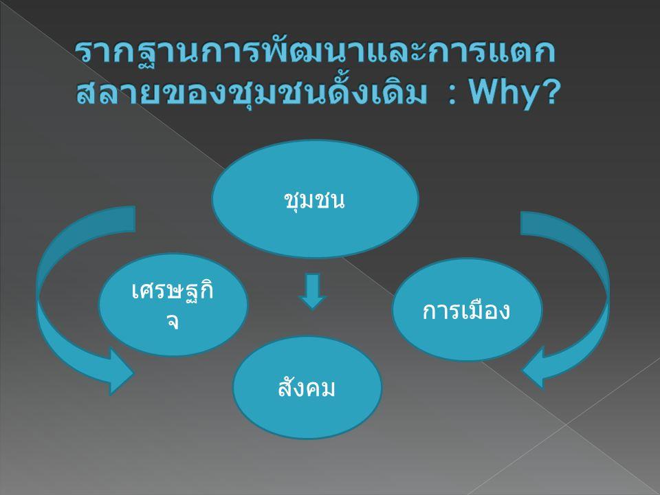 รากฐานการพัฒนาและการแตกสลายของชุมชนดั้งเดิม : Why