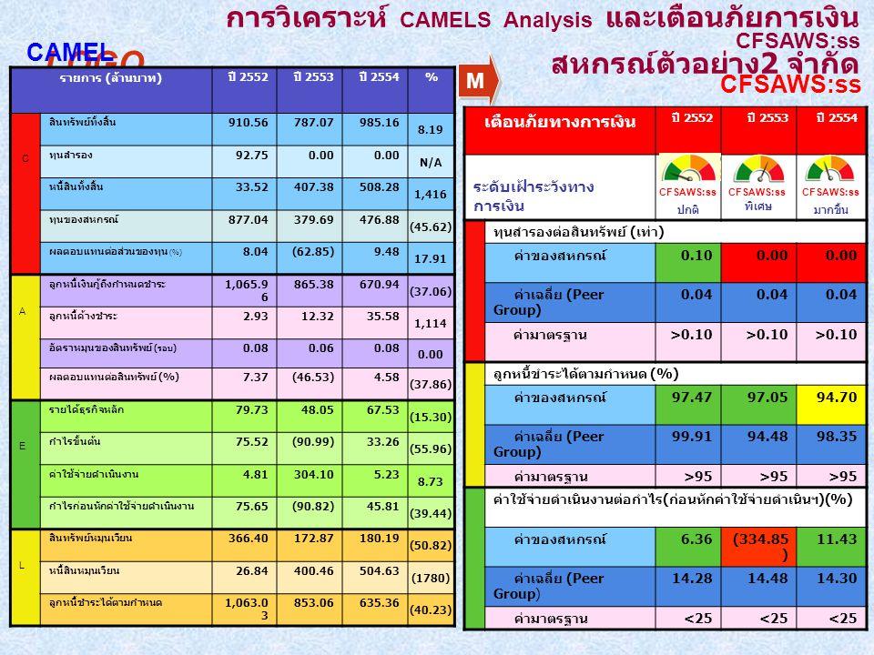 การวิเคราะห์ CAMELS Analysis และเตือนภัยการเงิน CFSAWS:ss