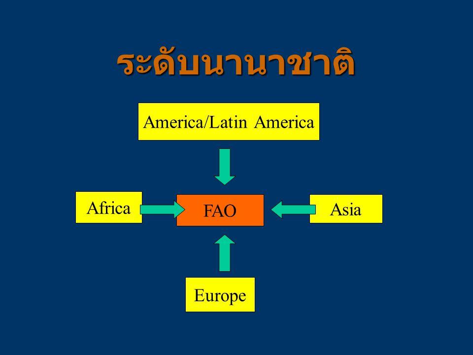 America/Latin America