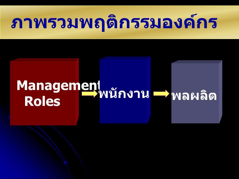 ภาพรวมพฤติกรรมองค์กร