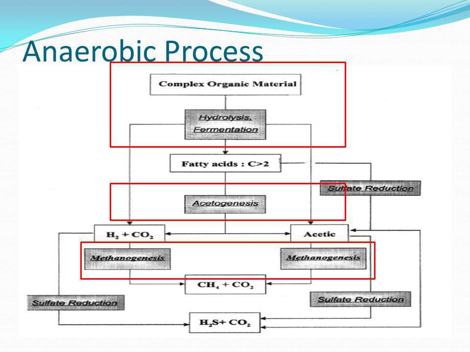 Anaerobic Process