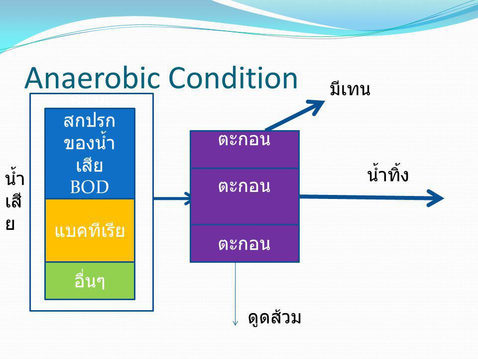 Anaerobic Condition มีเทน ความสกปรกของน้ำเสีย ตะกอน BOD COD