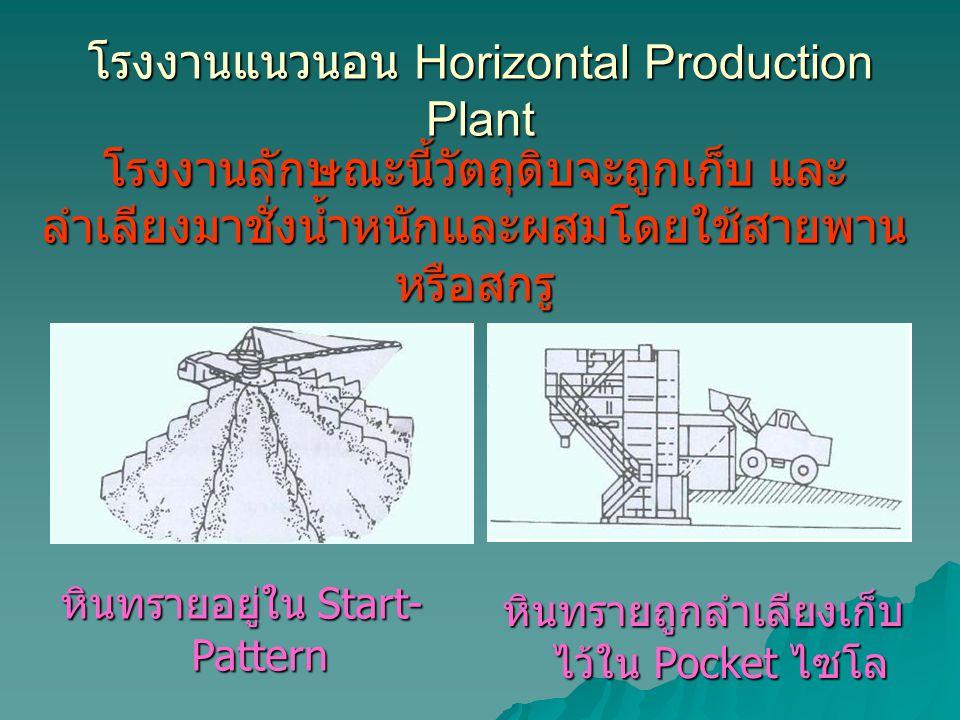 โรงงานแนวนอน Horizontal Production Plant