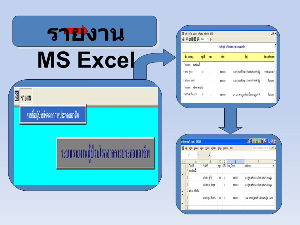 รายงาน MS Excel