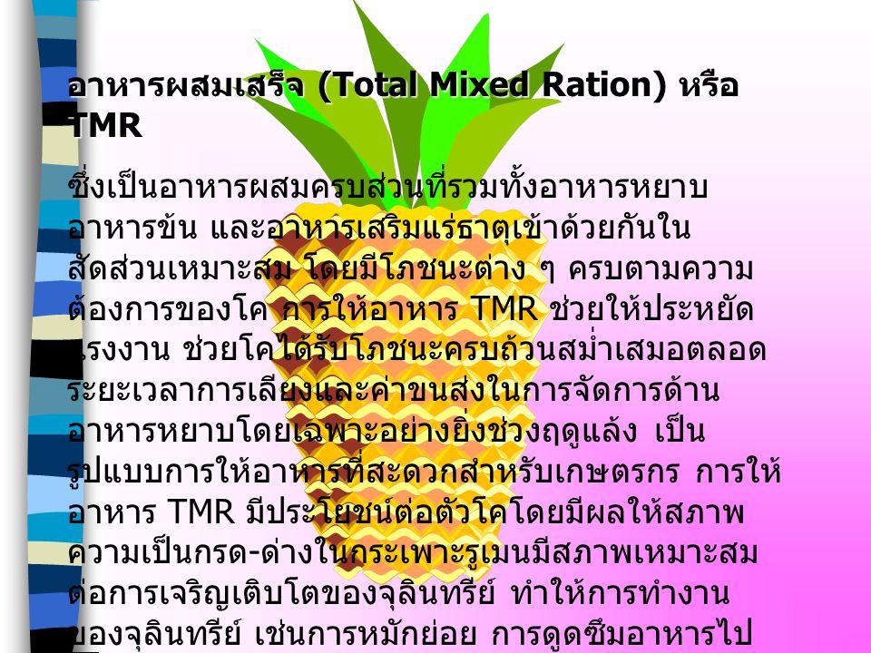อาหารผสมเสร็จ (Total Mixed Ration) หรือ TMR