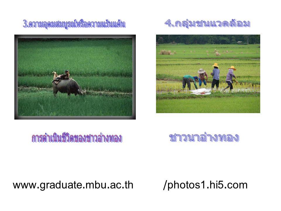 4.กลุ่มชนแวดล้อม ชาวนาอ่างทอง www.graduate.mbu.ac.th /photos1.hi5.com