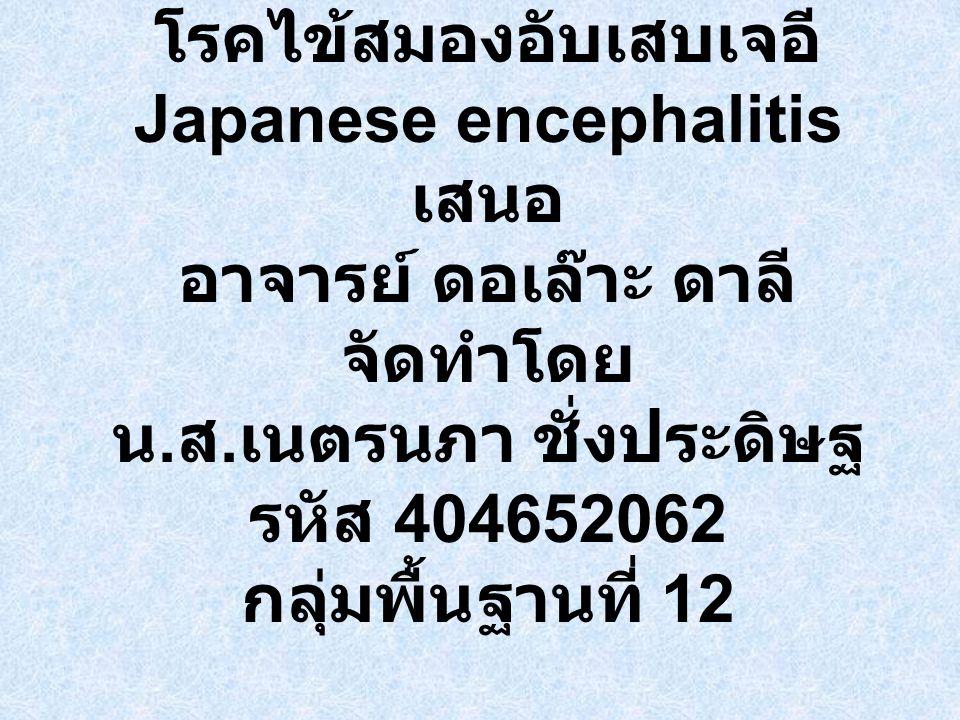 โรคไข้สมองอับเสบเจอี Japanese encephalitis เสนอ อาจารย์ ดอเล๊าะ ดาลี จัดทำโดย น.ส.เนตรนภา ชั่งประดิษฐ รหัส 404652062 กลุ่มพื้นฐานที่ 12