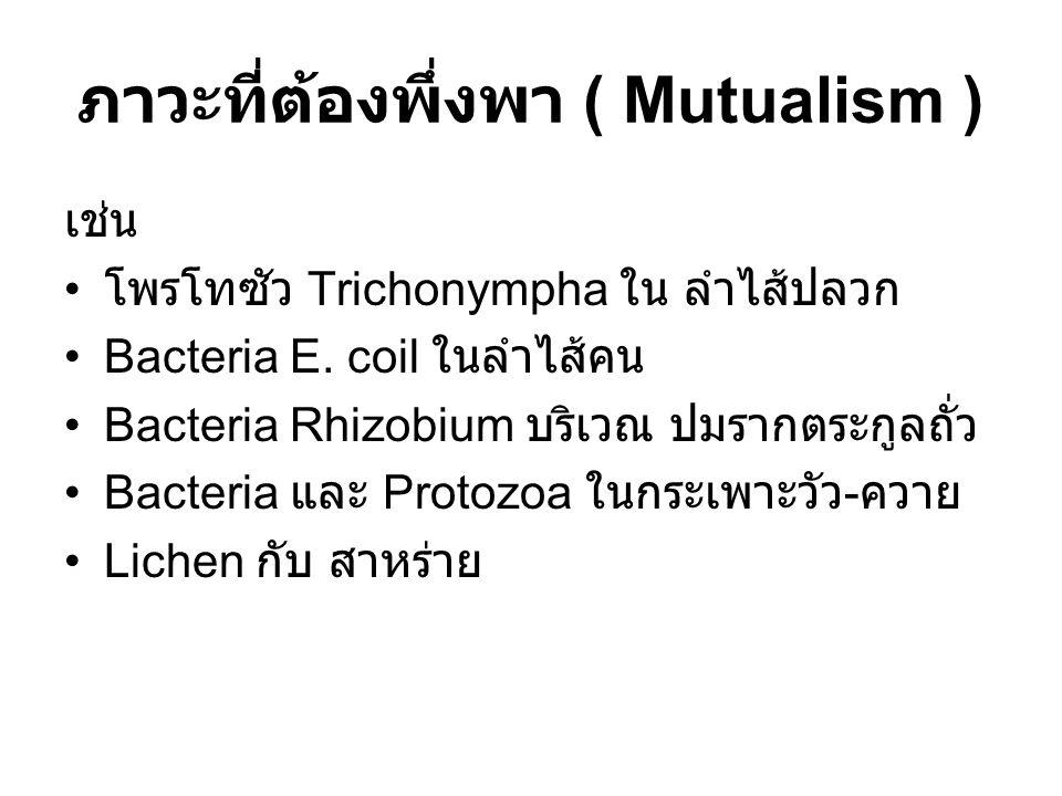 ภาวะที่ต้องพึ่งพา ( Mutualism )