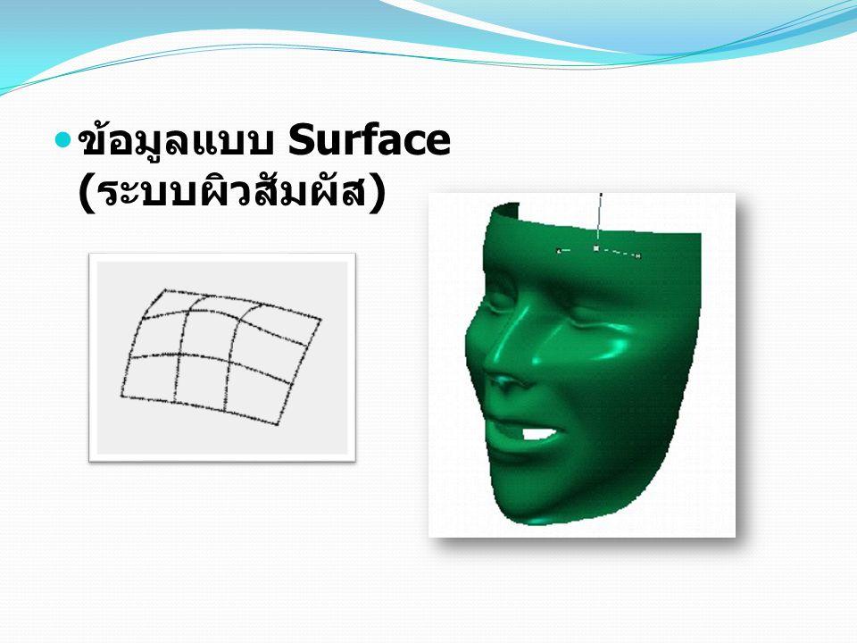 ข้อมูลแบบ Surface (ระบบผิวสัมผัส)