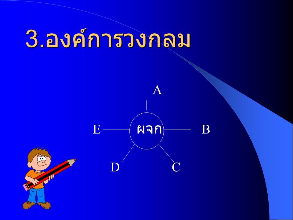 3.องค์การวงกลม A E ผจก B D C