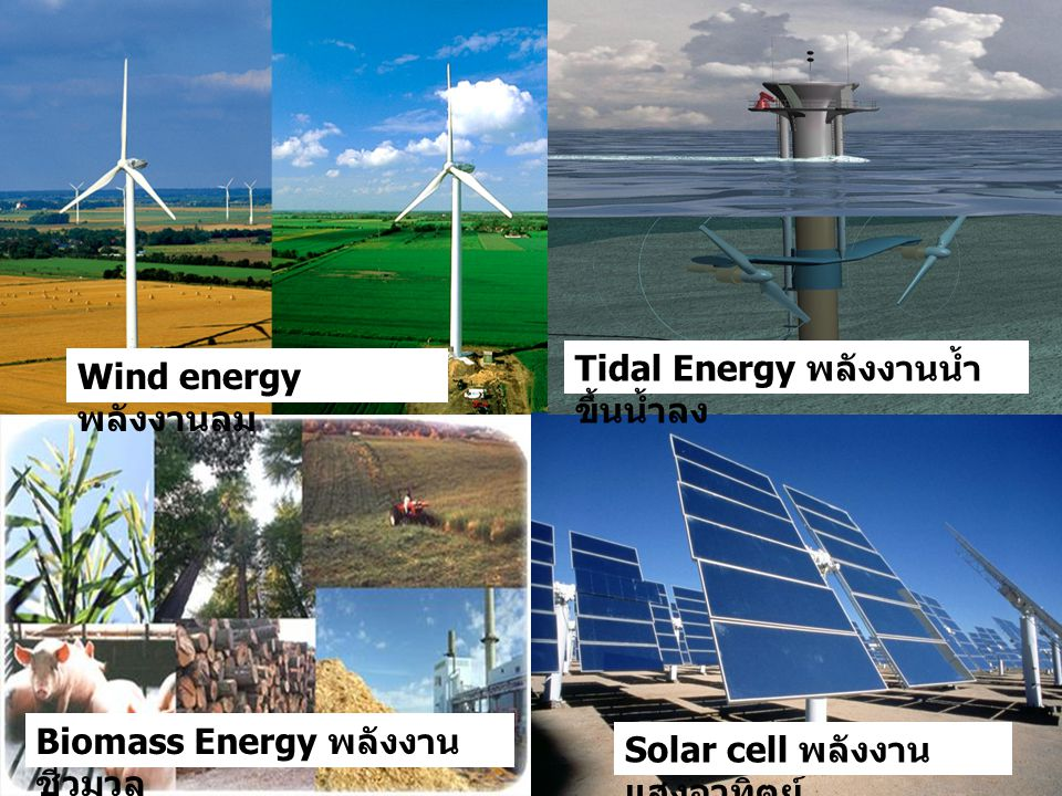 Tidal Energy พลังงานน้ำขึ้นน้ำลง