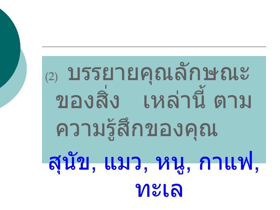 (2) บรรยายคุณลักษณะของสิ่ง เหล่านี้ ตามความรู้สึกของคุณ