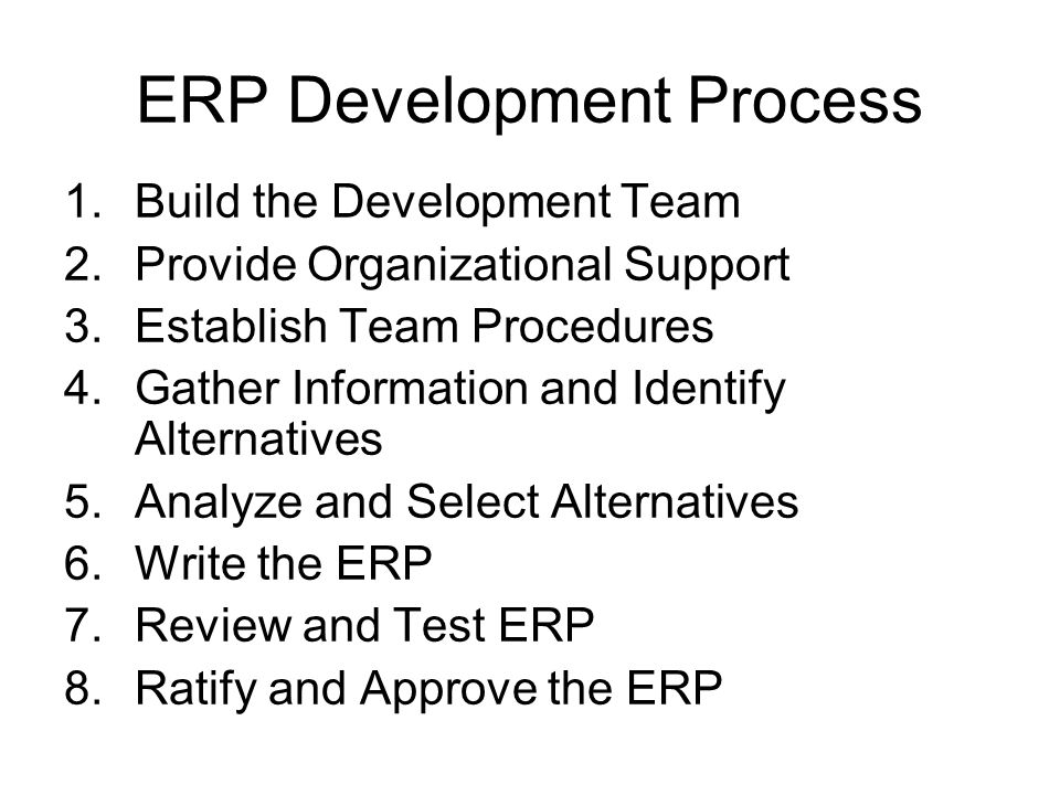 ERP Development Process