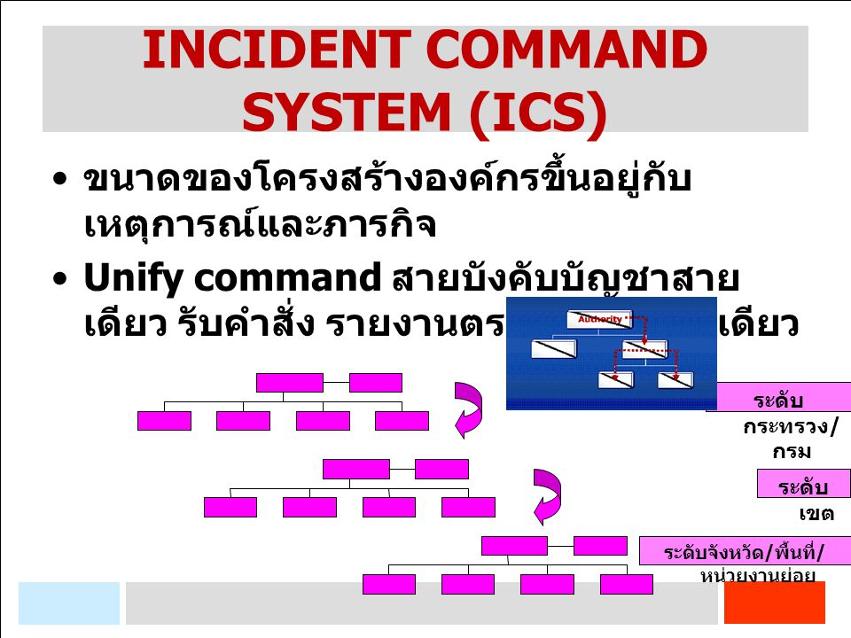 INCIDENT COMMAND SYSTEM (ICS)