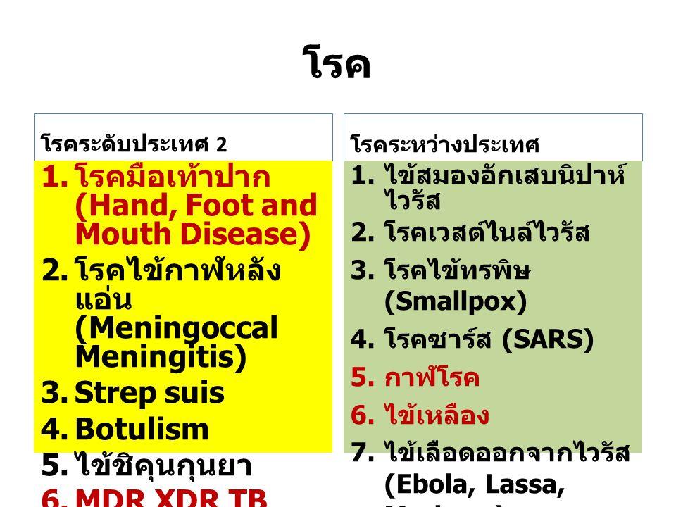 โรค โรคมือเท้าปาก (Hand, Foot and Mouth Disease)