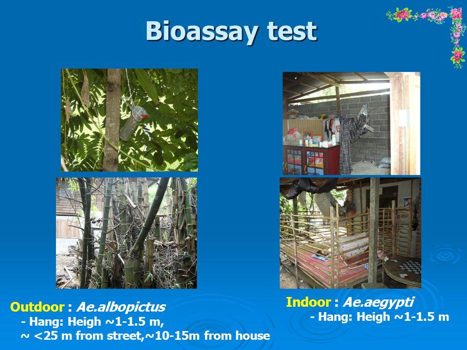 Bioassay test Indoor : Ae.aegypti Outdoor : Ae.albopictus