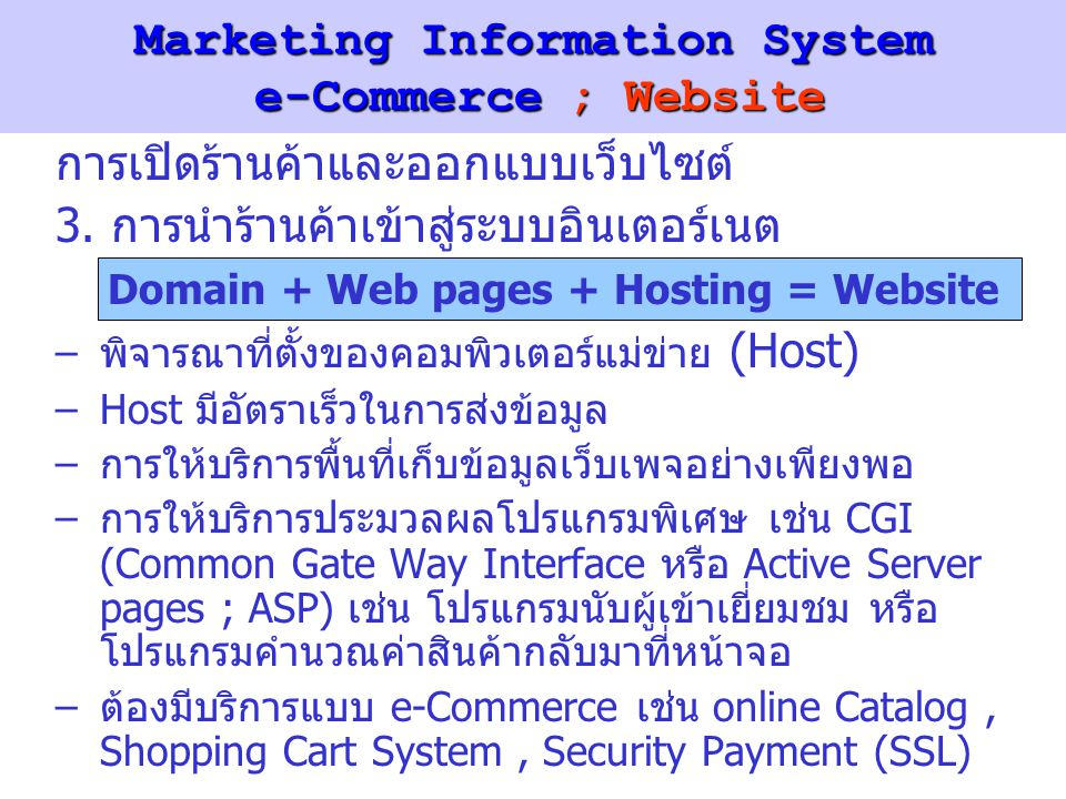 Marketing Information System e-Commerce ; Website