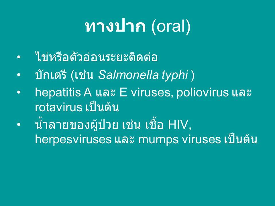 ทางปาก (oral) ไข่หรือตัวอ่อนระยะติดต่อ