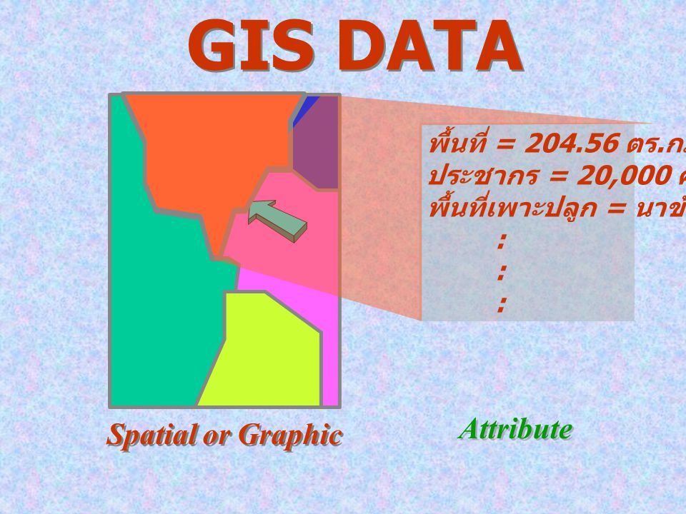 GIS DATA Attribute Spatial or Graphic พื้นที่ = 204.56 ตร.กม.