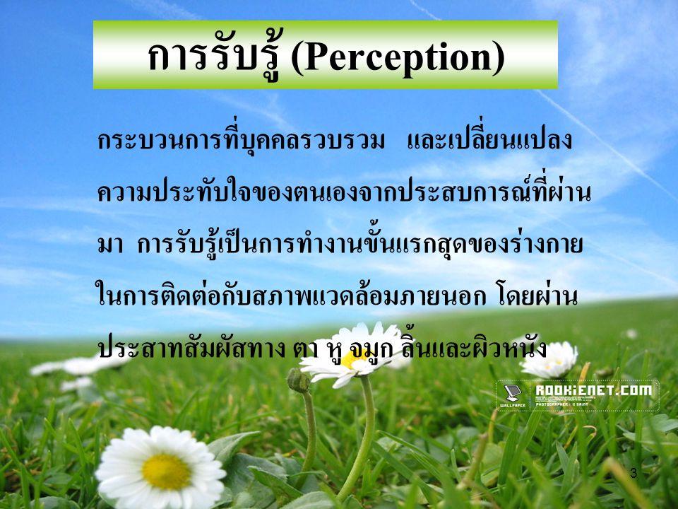 การรับรู้ (Perception)