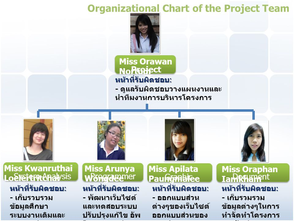 Organizational Chart of the Project Team