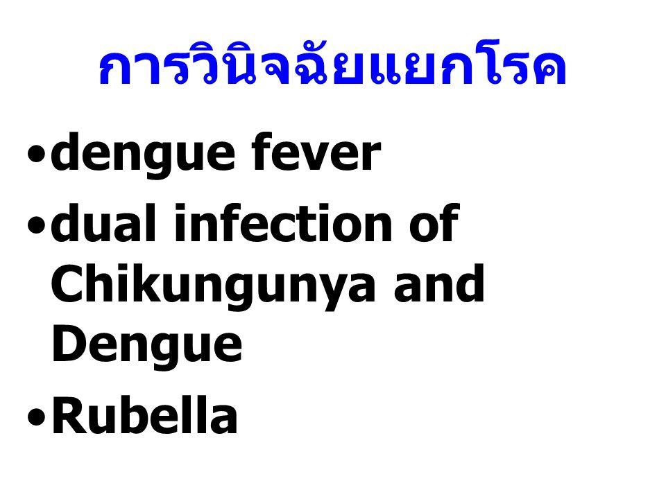 การวินิจฉัยแยกโรค dengue fever