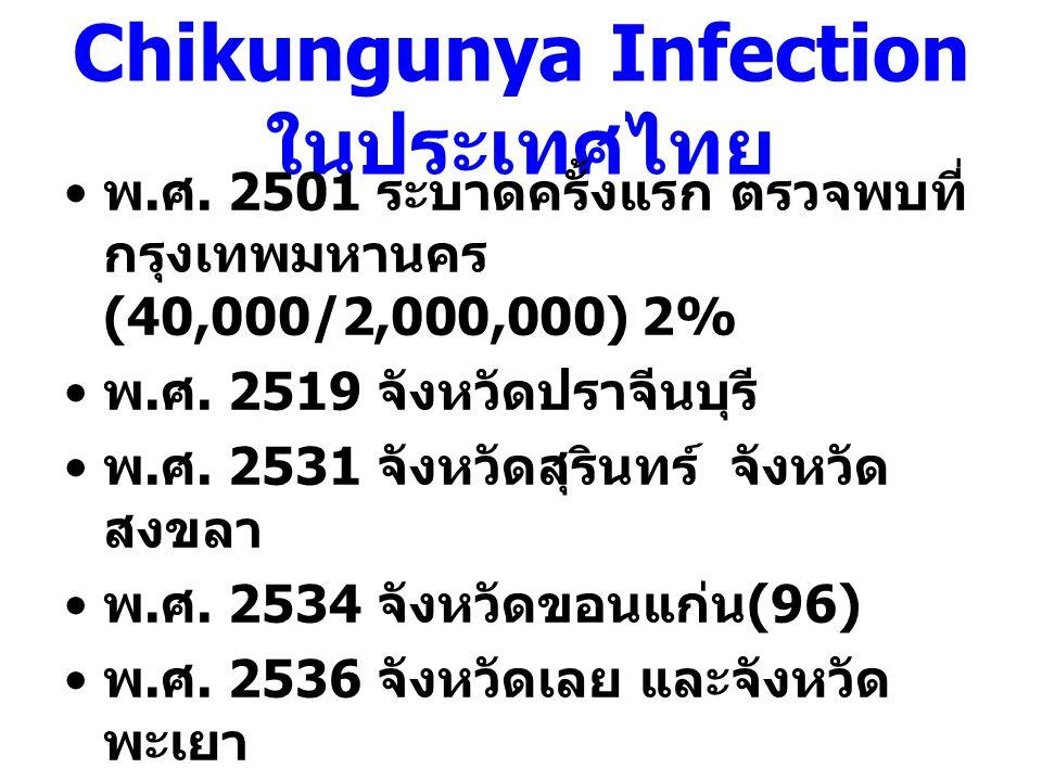 Chikungunya Infection ในประเทศไทย