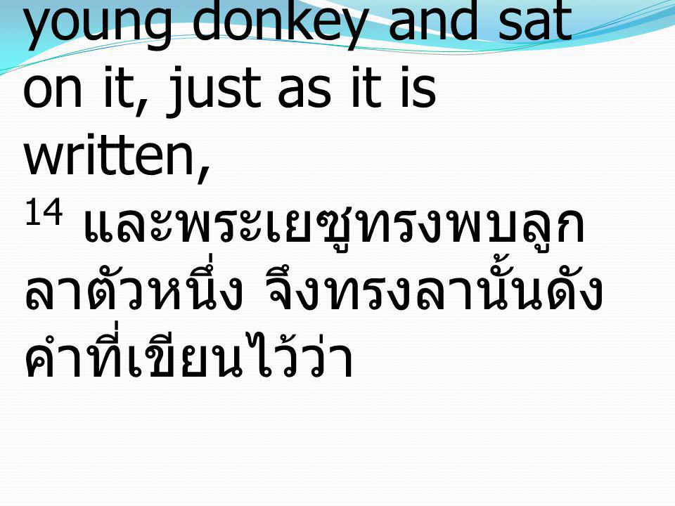 14 And Jesus found a young donkey and sat on it, just as it is written, 14 และพระเยซูทรงพบลูกลาตัวหนึ่ง จึงทรงลานั้นดังคำที่เขียนไว้ว่า